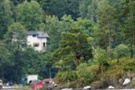 Norveç katilinin kan donduran infazı