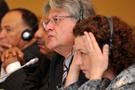 Avusturyalı vekilden BDP'ye 'savaş' dersi
