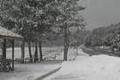 Başkent'e yılın ilk karı düştü