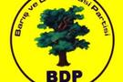 BDP'li meclis üyesine şok gözaltı