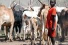 Güney Sudan'da aşiretler arası tırmanan şiddet