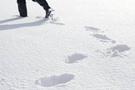 Uludağ'a yılın ilk karı düştü