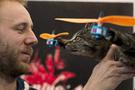 Ölen kedisini 'helikopter' yaptı