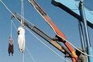 İran'da 2 kişiye içki idamı