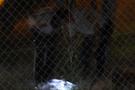 Komutanlık bahçesinde bomba alarmı