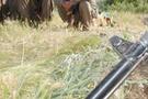 Suikast hazırlığındaki PKK'lılara darbe