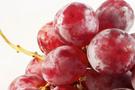 Şeker hastaları için üzüm üretildi