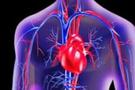 Kalbi iyileştiren virüs yapıldı