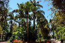 Fas'ın inanılmaz bahçeleri