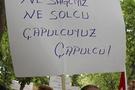 Herkes Çapulcu'nun peşine düştü