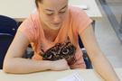 Eğitimciler yeni sistem için ne dedi?