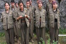 12 üniversite öğrencisi PKK'ya katıldı