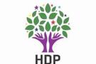 HDP Eş Başkanına bıçaklı saldırı!