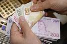 Bunu yapana devlet aylık 735 lira ödeyecek