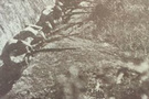 Bir savaş dört mektup: Çanakkale