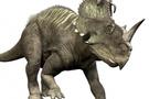 68 milyon yıllık dinozor fosili bulundu