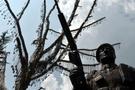 Şehitler Ağacı'na 56 künye daha çakıldı buruk acı