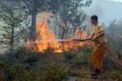 Adana'daki yangın 2 hektarı yok etti