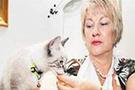 Kedisini pitonun ağzından aldı!