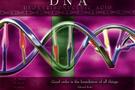 Bilim dünyasında DNA şoku!