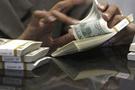 Dolar sakin borsa yükseldi