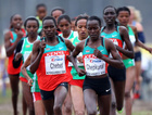 Kenyalı 7 atlete doping cezası