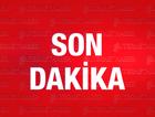 Cizre'deki bodrum katı HDP'li heyet harekete geçti
