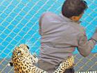 Leopar okula girdi! Görüntüler dehşet!
