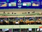 Borsa'da yarım milyon dolarlık satış
