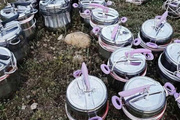 PKK'dan korkunç tuzak bombaları böyle hazırladılar!