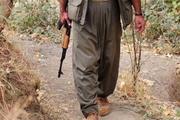 Elazığ'da öldürülen PKK'lı bakın kim çıktı!