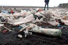 Sahili kirletenleri utandıracak çalışma!