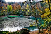 Sonbaharın en güzel renkleri Yedigöller'de