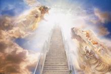 Onlar cennetle müjdelendi! En çok sadaka veren...