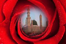 Hz Muhammed'in en çok sevdiği kişi!