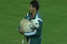 Sahaya giren köpek futbolcularla oynamak istedi