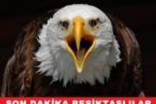 Beşiktaş - Partizan maçının capsleri