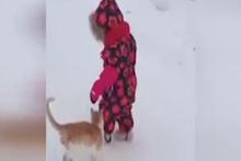 Kedi bebeğin üzerine böyle zıpladı!