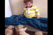 Bebeklerin yavru köpeklerle imtihanı