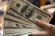 Trakya'da dolar bozma kampanyası başladı