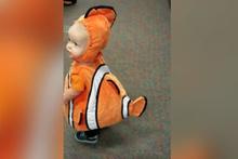 Kayıp Balık Nemo kostümlü şirin bebek