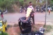 Öfkeli fil motorsikletleri hurdaya çevirdi