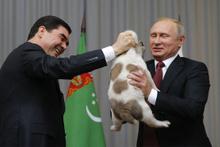 Türkmenistan Devlet Başkanı'ndan Putin'e doğum günü hediyesi