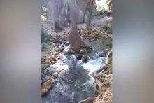 Nehrin kaynağı nereden gelir?