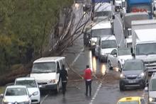 Zeytinburnu'nda ağaç devrildi; 2 araç hasar gördü