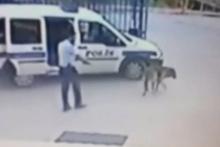 İzmir'de köpek vuran komiser Fetö'cü çıktı