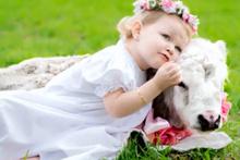 2 yaşındaki bebek ile buzağının dostluğu