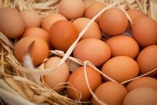 Doğal yumurta bir yalan mı işin ehliden inanılmaz açıklama