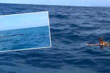 Survivor'ın ünlü ismi yüzerken dev bir balinayla karşılaştı!