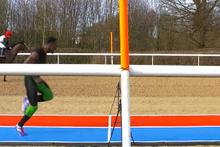 At ile insan yarışırsa ne olur? İşte cevabı
